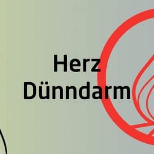 Qigong Seminar - Herz Dünndarm Funktionskreis