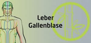 Qigong Seminar - Leber Gallenblase Funktionskreis
