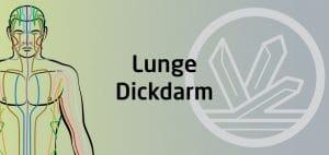 Qigong Seminar - Lunge Dickdarm Funktionskreis