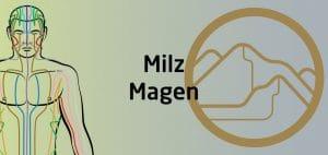 Qigong Seminar - Milz Magen Funktionskreis