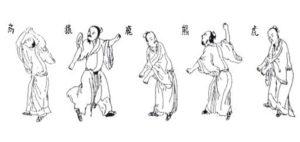 Qigong- Spiel der 5 Tiere